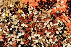 Seeds, Beans, Kernels that are cooking by boiling royalty free stock photography