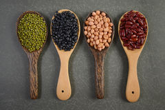 Seeds beansBlack Bean, Red Bean, Peanut and Mung Bean useful for health in wood spoons on grey background.  Royalty Free Stock Photos