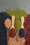 Seeds beansBlack Bean, Red Bean, Peanut and Mung Bean useful for health in wood spoons on grey background.  Royalty Free Stock Image