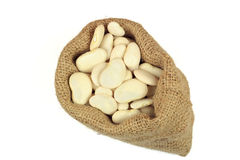 Seeds Big Lima (Butter) bean. Royalty Free Stock Photos