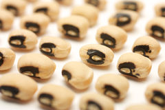 Seeds of black eye beans in the flat series Stock Photography