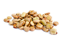 Seeds broad beans Royalty Free Stock Photo