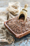 Seeds brown flax and wooden scoop. Stock Photos