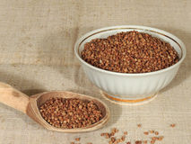 Seeds of buckwheat Stock Images