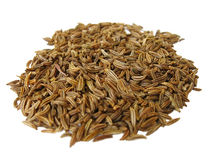 Seeds of caraway Stock Images
