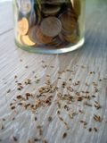 Seeds and coins stock photography