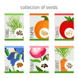Seeds collection of flowers and vegetables. Seeds collection in package. Tomato and fennel, pumpkin and iris, peony and carrot seeds for garden. Vector Royalty Free Stock Photography