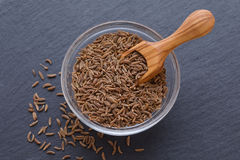 Seeds of cumin, caraway in a bowl and wooden scoop on black background. Seeds of cumin, caraway in a bowl and wooden scoop on black Stock Images