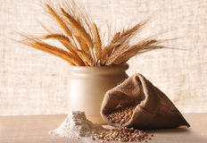 Seeds, ears of cereal and flour Stock Photos