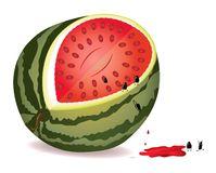 Seeds escape from water-melon Stock Photo