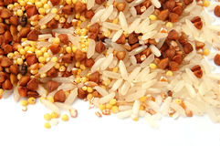 Seeds and grains Stock Photo