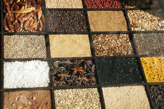 Seeds and grains displayed in rectangular sections Royalty Free Stock Photography