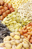 Seeds and nuts collection Royalty Free Stock Photo
