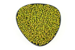 Seeds Organic Mung bean. Stock Photography
