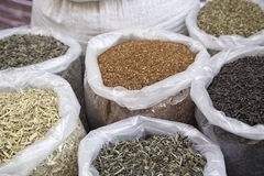 Seeds and oriental spices Stock Image