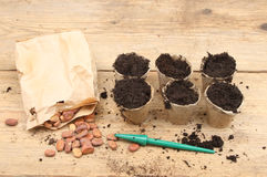 Seeds and plant pots Royalty Free Stock Photo