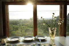 Seeds on plates. Dish with vegetable seeds on the sun deck Royalty Free Stock Image