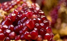 Seeds of pomegranate 2. Closeup seeds of pomegranate macro with texture Stock Photography