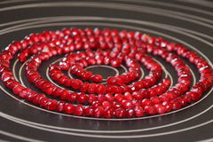 Seeds of pomegranate Stock Images