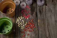 Seeds and Pots. Ready for a new garden season Royalty Free Stock Photo