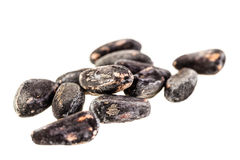 Seeds. Some big seeds isolated over a white background Royalty Free Stock Photo