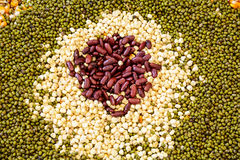 Seeds Spread a flat sheet Stock Photo