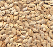 Seeds texture Stock Image
