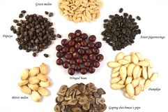 Seeds, Thailand Royalty Free Stock Images