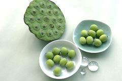 Seeds of water lily. Fresh green seeds of water lily Stock Image