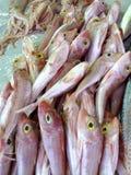 Seefisch in Griechenland auf dem Markt Kaufen Sie Fische reisen Lizenzfreies Stockbild