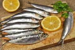 Seefisch mit frischer Petersilie und Zitrone lizenzfreie stockfotos