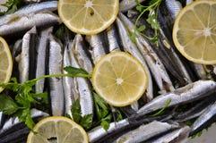 Seefisch mit frischer Zitrone und Petersilie stockfoto