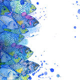 Seefischillustration Altes gelbes Papier auf dunklem Hintergrund Stockfotografie