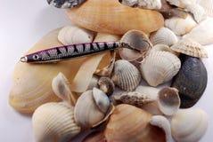 Seefischköder-Weißhintergrund Lizenzfreies Stockbild