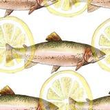 Seeforellenfische mit Zitrone, Aquarellmalereiillustration auf einem Weißbuchkunsthintergrund Stockfotos