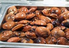 Seefrüchte Stockbild
