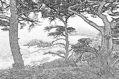 Seegeschichten Stockfoto