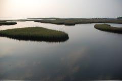 Seegras-Kap San Blas, Florida Lizenzfreie Stockbilder