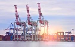 Seehafen mit Kränen während der Dämmerung Ladung und Verschiffen lizenzfreie stockfotos