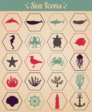 Seeikonen und Symbolsatz Seetiere Seegestaltungselemente Vektor Stockfotografie