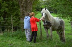 Seeing the Horse. Two children petting a horse over a fence Royalty Free Stock Photos