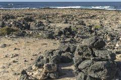Seeküste auf Fuertaventura stockbilder