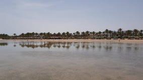 Seeküste mit Palmen stock video