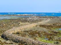 Seeküste während des Ausflusses stockbild