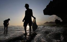 Seekers seaweed on the beach soemandeng kidul mountain Royalty Free Stock Image