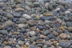 Seekiesel, Meer entsteint Hintergrund, Strand schaukelt Stockfotos