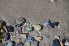 Seekiesel und -strand Stockbild