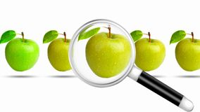 Seeking Magnifier for Apple vector illustration