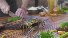 Seekrabbe, die auf Tabelle im Meeresfrüchterestaurant beim Kochen der Nahrung kriecht Chefkoch, der Seekrabbe für das Kochen in d stock video footage