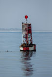 Seelöwen auf Kanalboje Stockfoto